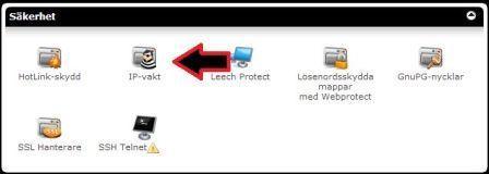 Ikon IP-vakt