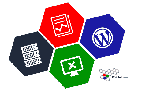 Uppdatera WordPress på rätt sätt
